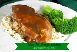 family-fun-crock-pot-orange-pork